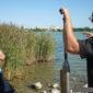 Новые защитники озера