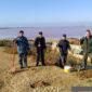 Высадка саженцев на берегу Сакского озера